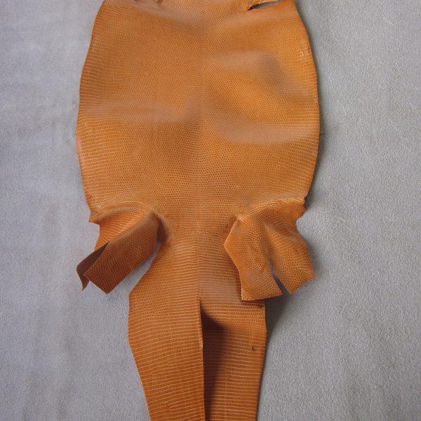 Peau de cuir de lézards orange